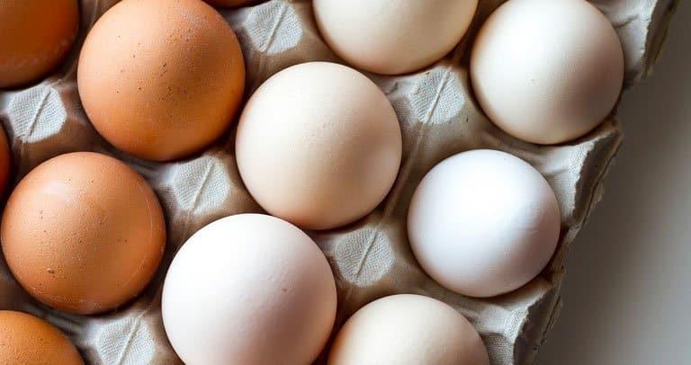 como conservar ovos